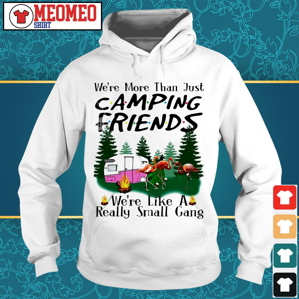 We're more than just camping friends Hoodie