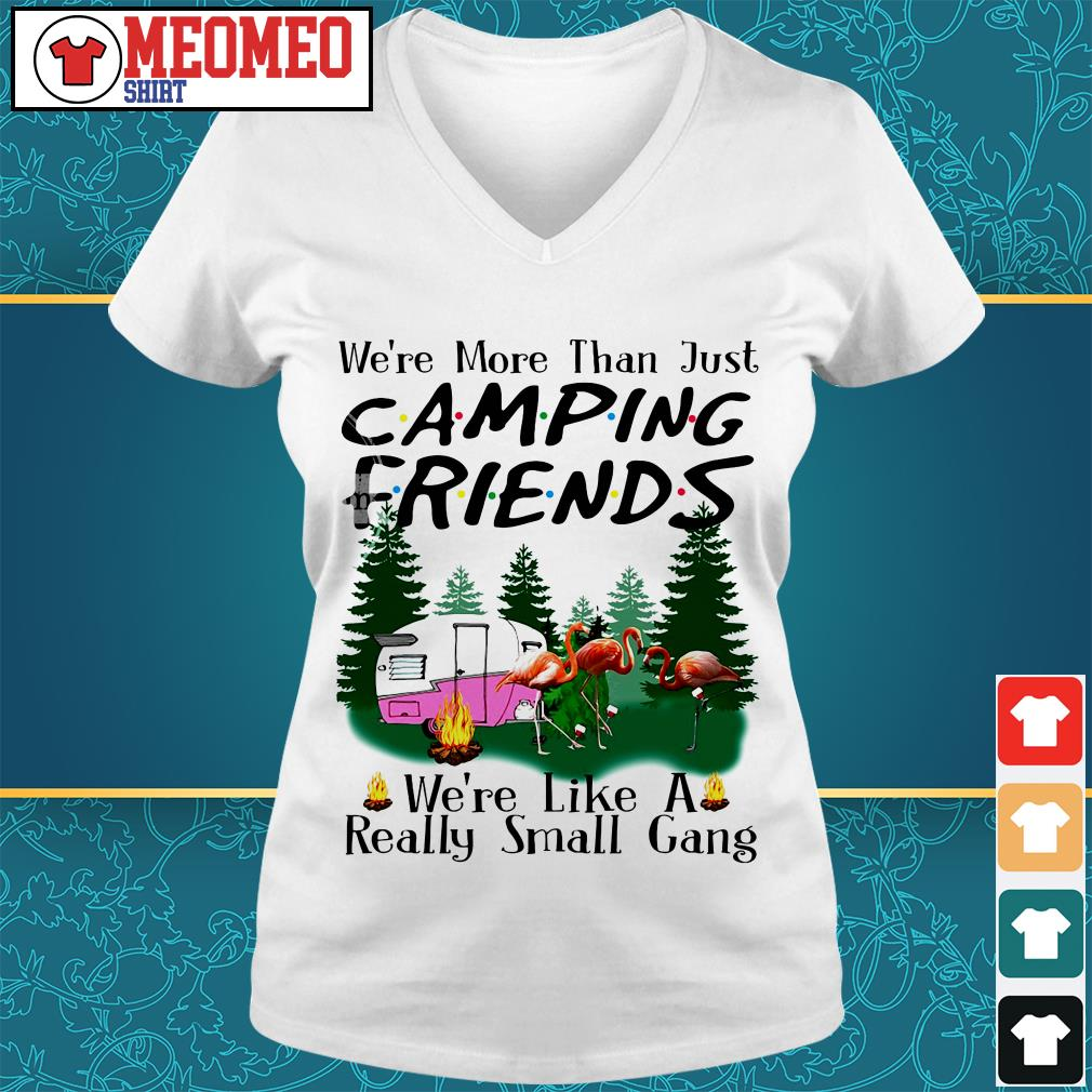We're more than just camping friends V-neck t-shirt